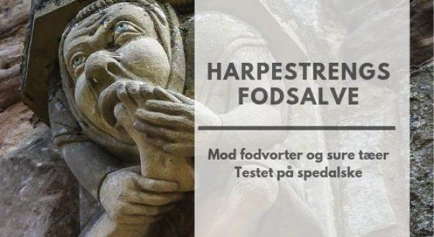 harpestreng (3)